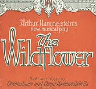 WILDFLOWER (1923)